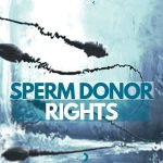 Sperm Donor Agreement Rights Sydney Family Lawyer